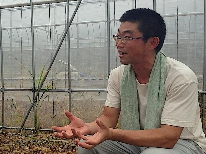小布施で農業を営まれている白澤さん